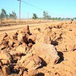 Mio Vigneto Vineyard - after slip plowing