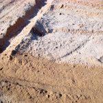 Mio Vigneto Vineyard - lime and soil